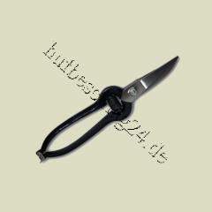 Pad scissors